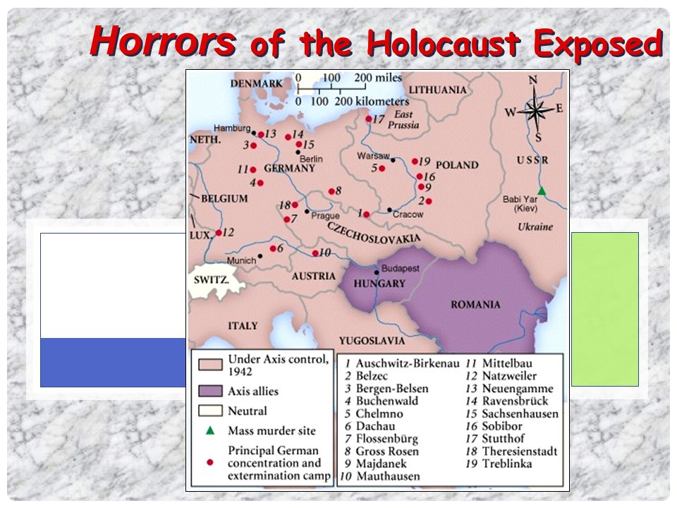 the horrors and deaths in the holocaust During the holocaust,  written shortly before their authors' deaths,  survivors who witnessed the crime with their own eyes and experienced the horrors.
