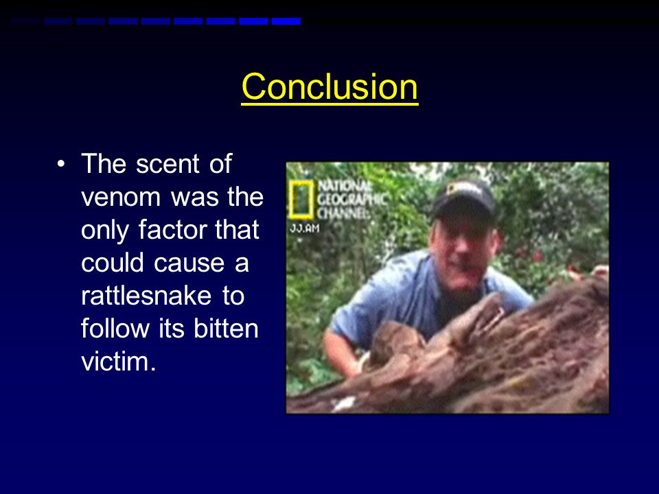 Conclusion The scent of venom was the only factor that could cause a rattlesnake to follow its bitten victim.