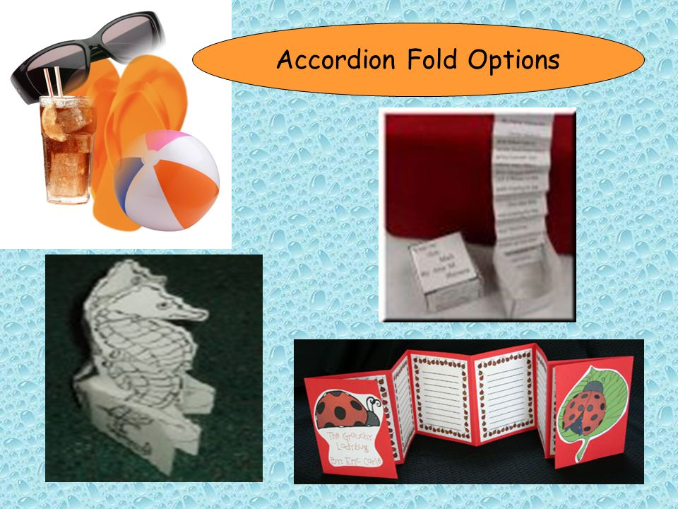 Accordion Fold Options