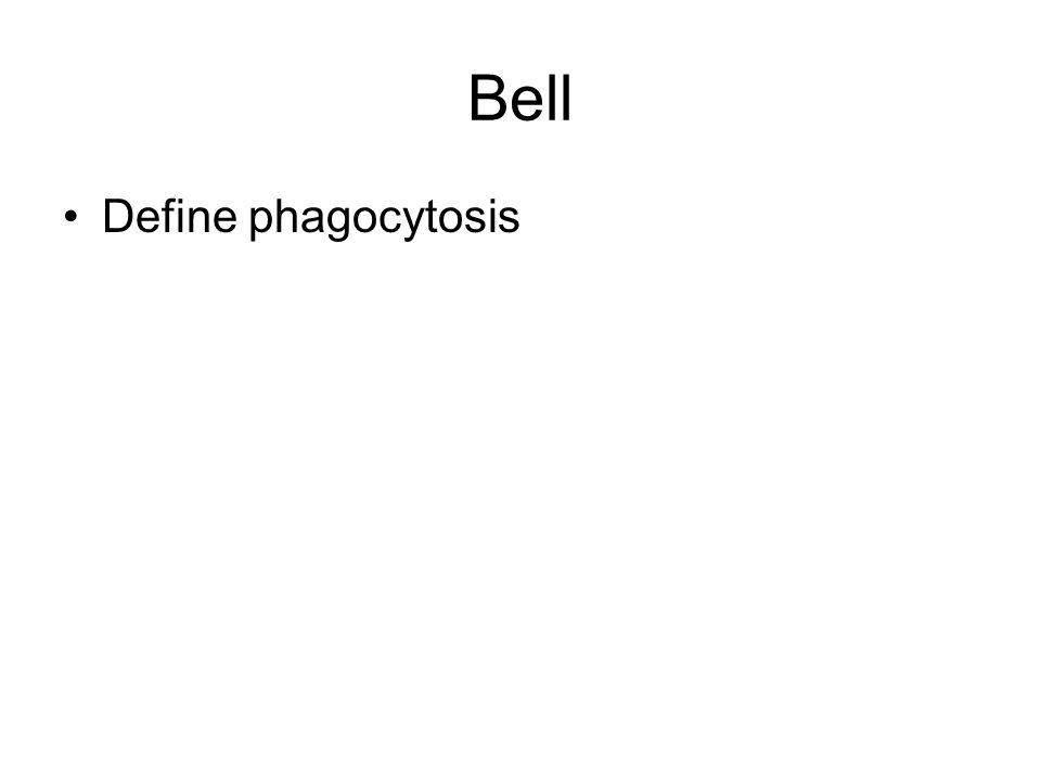 Bell Define phagocytosis