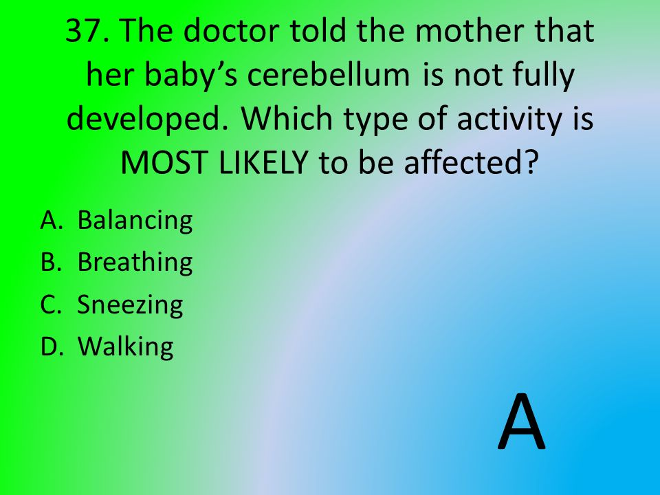 37. The doctor told the mother that her baby's cerebellum is not fully developed. Which type of activity is MOST LIKELY to be affected