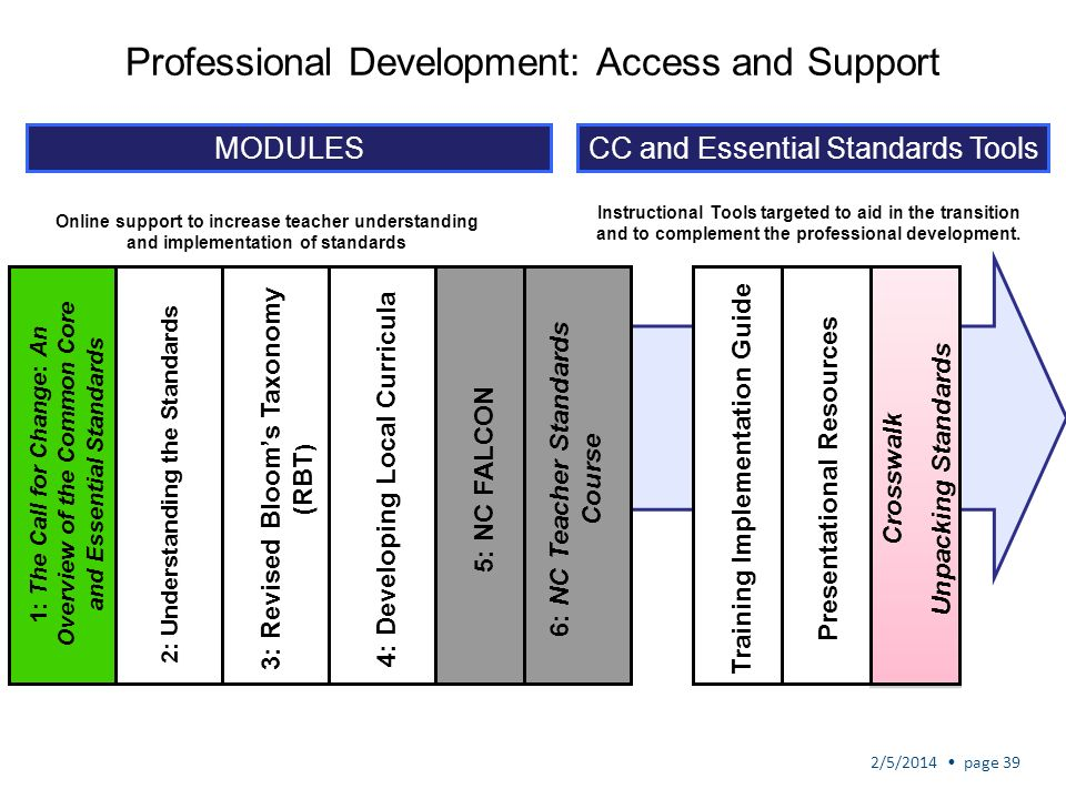 Professional Development: Access and Support