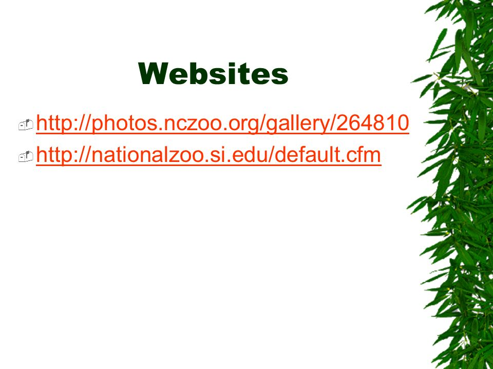 Websites http://photos.nczoo.org/gallery/264810