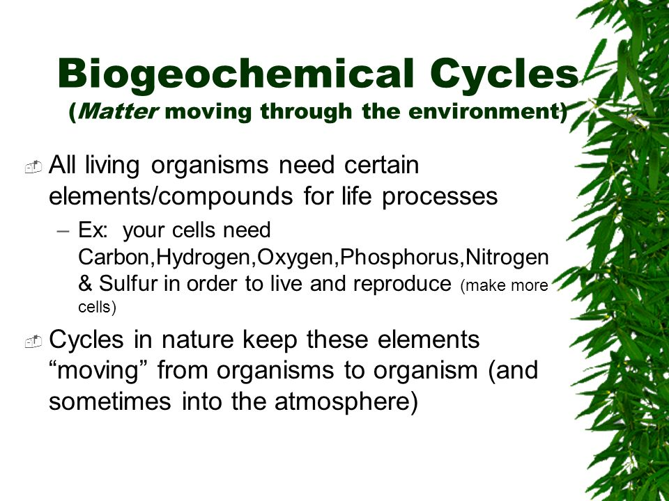 Biogeochemical Cycles (Matter moving through the environment)
