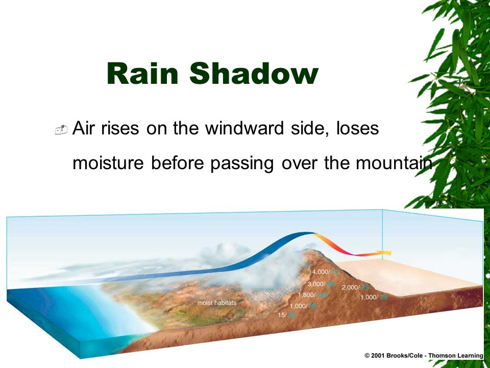 Rain Shadow Air rises on the windward side, loses moisture before passing over the mountain