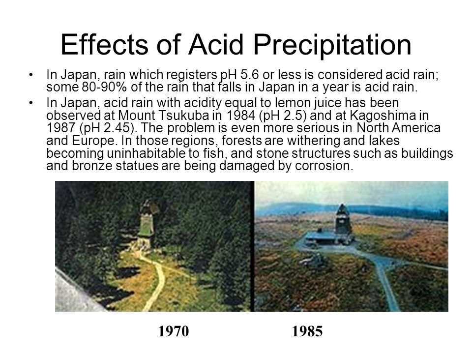 Effects of Acid Precipitation