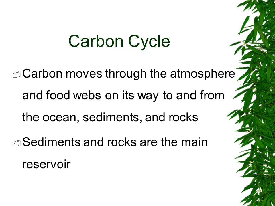 Carbon Cycle Carbon moves through the atmosphere and food webs on its way to and from the ocean, sediments, and rocks.