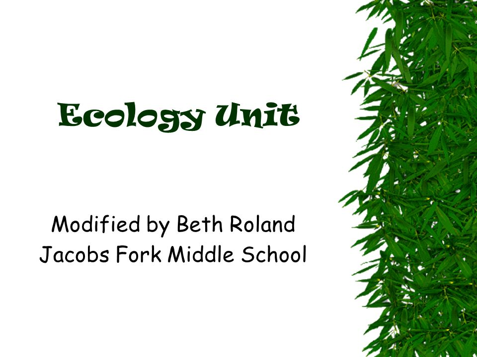 Modified by Beth Roland Jacobs Fork Middle School