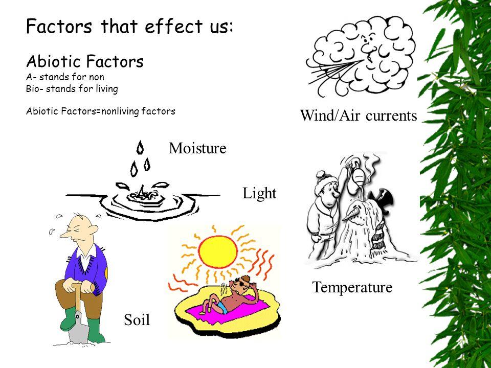 Factors that effect us: