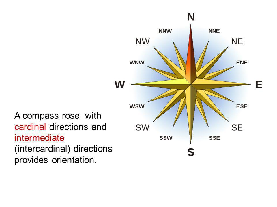 A compass rose with cardinal directions and intermediate (intercardinal) directions provides orientation.