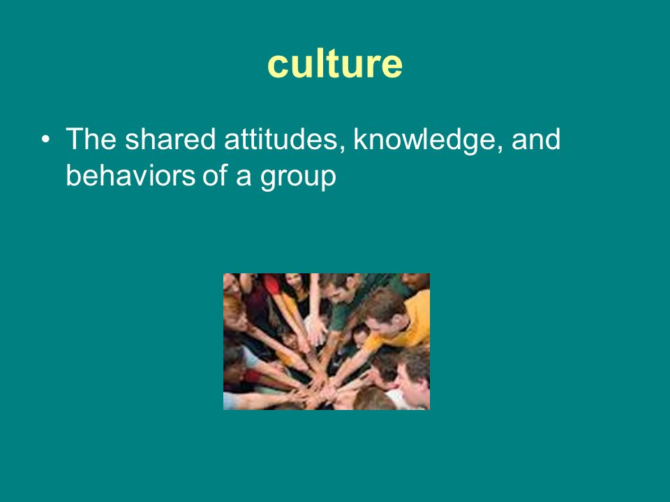 culture The shared attitudes, knowledge, and behaviors of a group