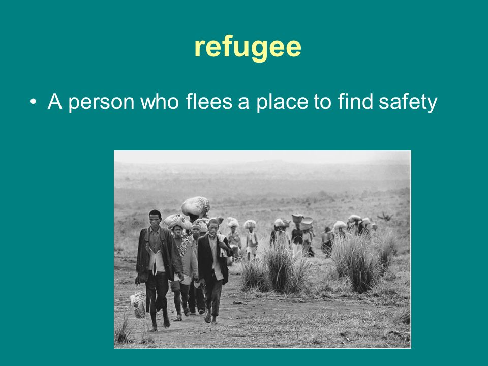 refugee A person who flees a place to find safety