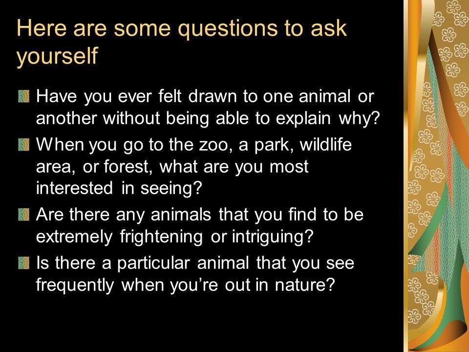 Here are some questions to ask yourself