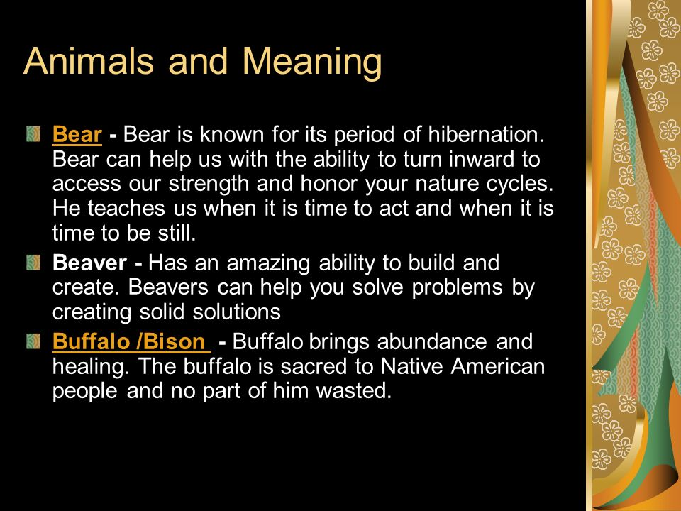 Animals and Meaning