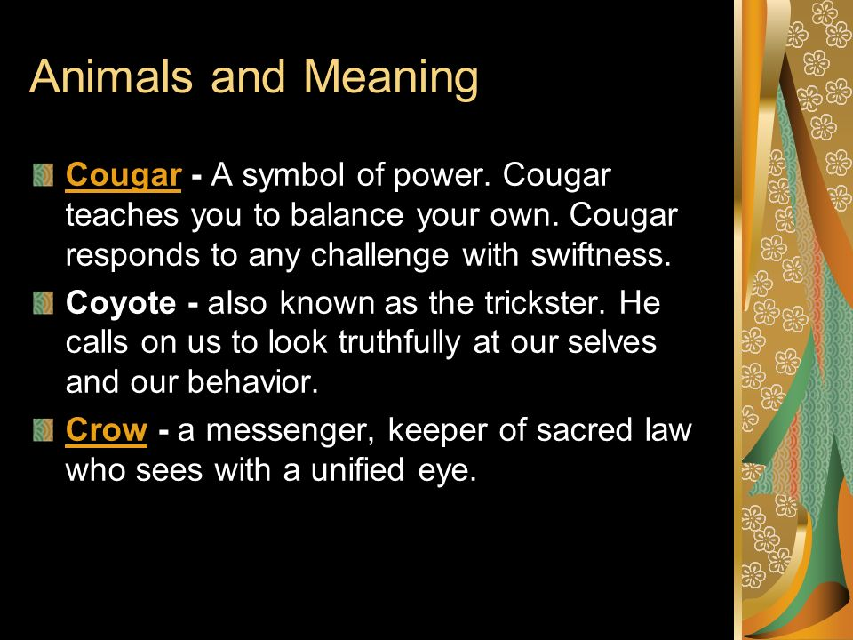 Animals and Meaning Cougar - A symbol of power. Cougar teaches you to balance your own. Cougar responds to any challenge with swiftness.