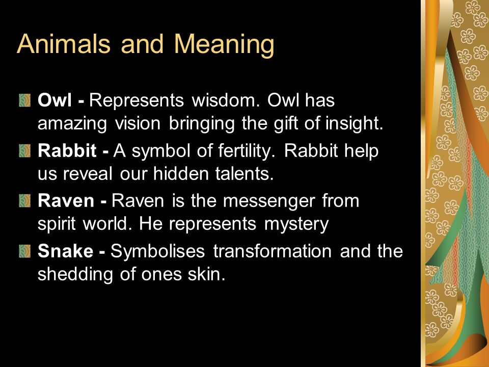 Animals and Meaning Owl - Represents wisdom. Owl has amazing vision bringing the gift of insight.
