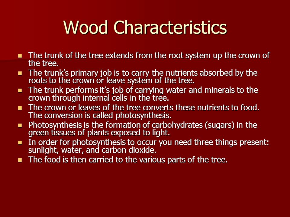 Wood Characteristics The trunk of the tree extends from the root system up the crown of the tree.