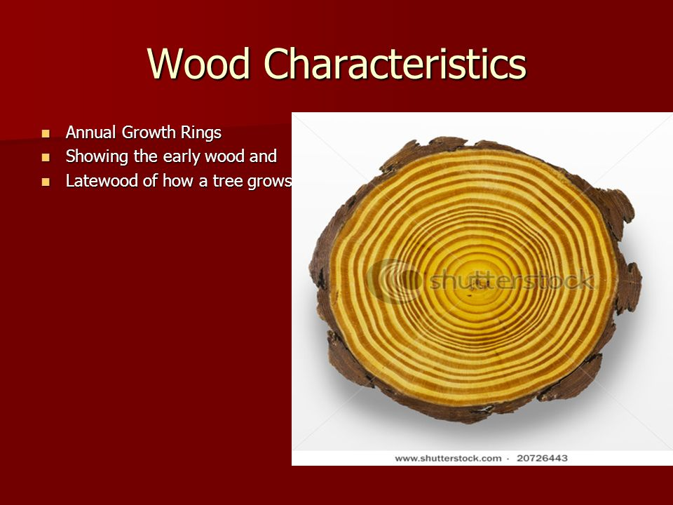 Wood Characteristics Annual Growth Rings Showing the early wood and