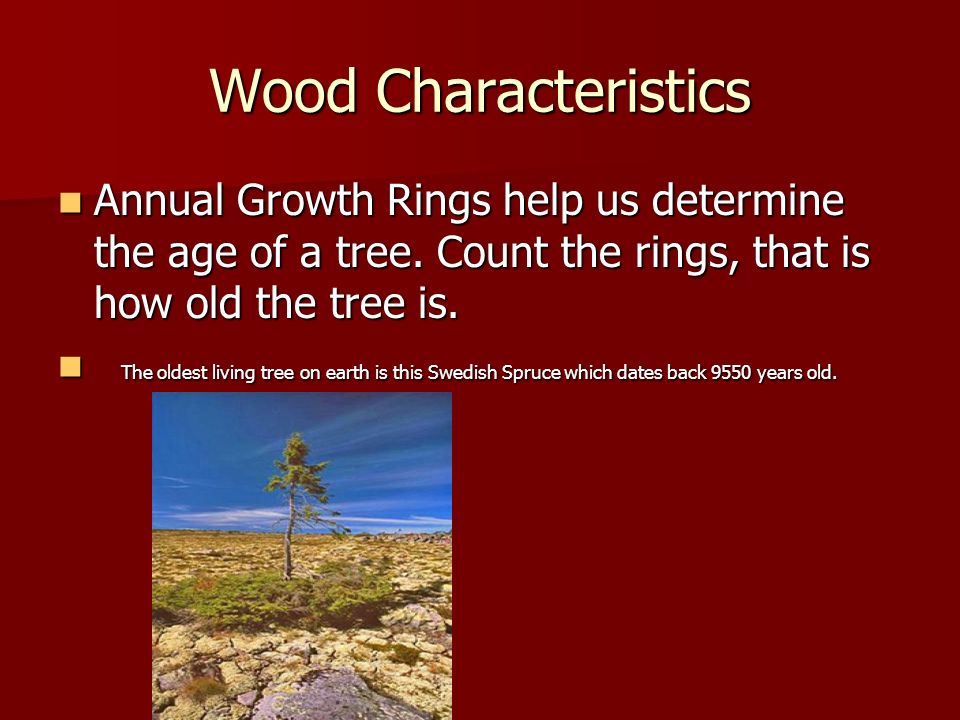 Wood Characteristics Annual Growth Rings help us determine the age of a tree. Count the rings, that is how old the tree is.