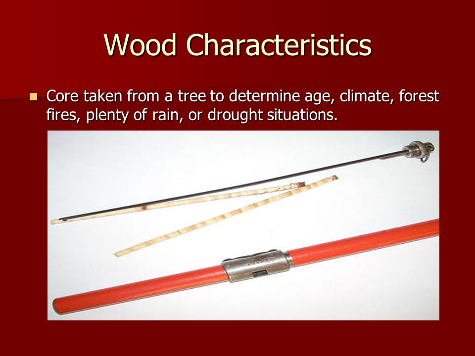 Wood Characteristics Core taken from a tree to determine age, climate, forest fires, plenty of rain, or drought situations.