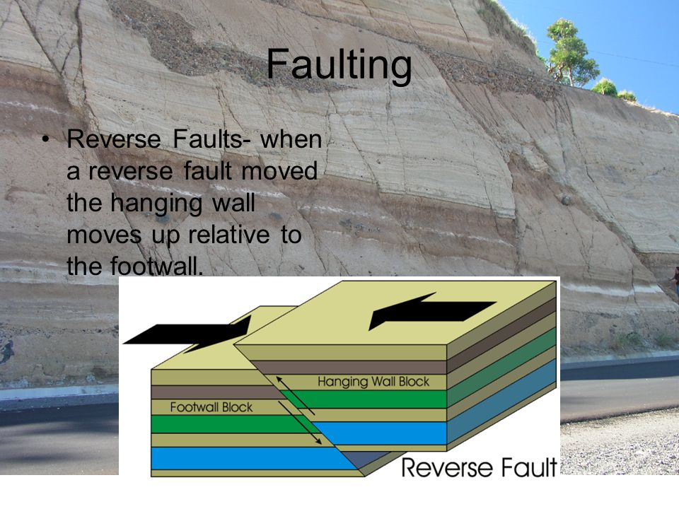 Faulting Reverse Faults- when a reverse fault moved the hanging wall moves up relative to the footwall.