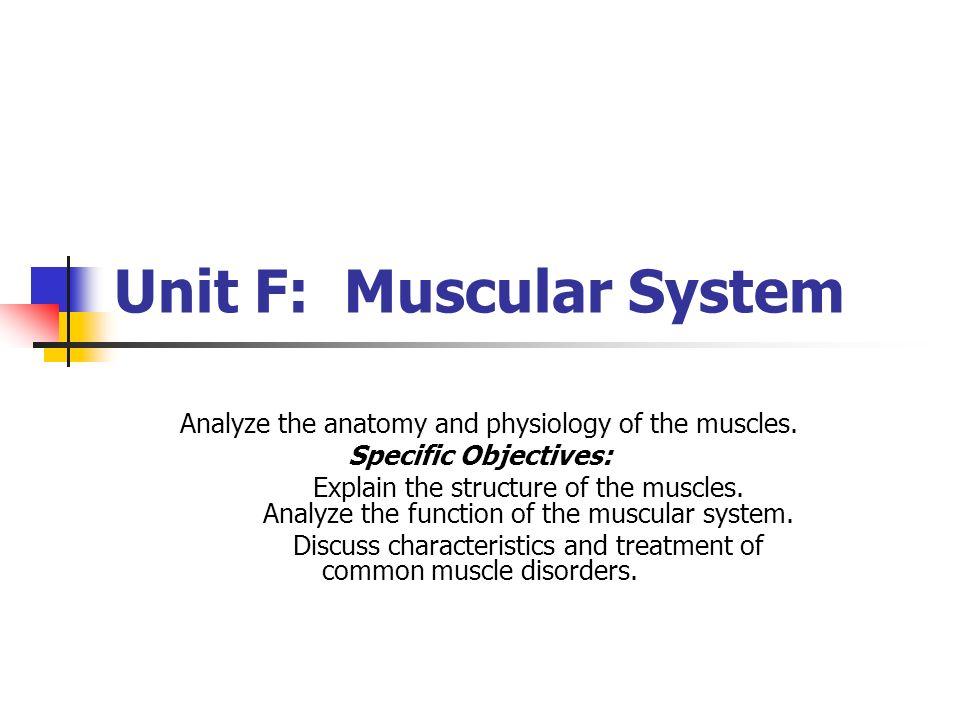 Unit F: Muscular System