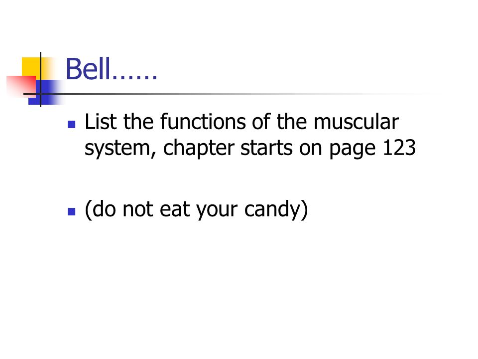 Bell…… List the functions of the muscular system, chapter starts on page 123.