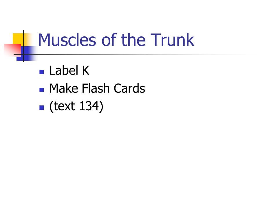 Muscles of the Trunk Label K Make Flash Cards (text 134)