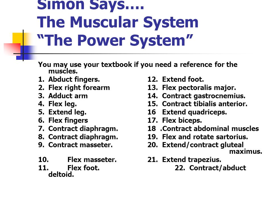 Simon Says…. The Muscular System The Power System