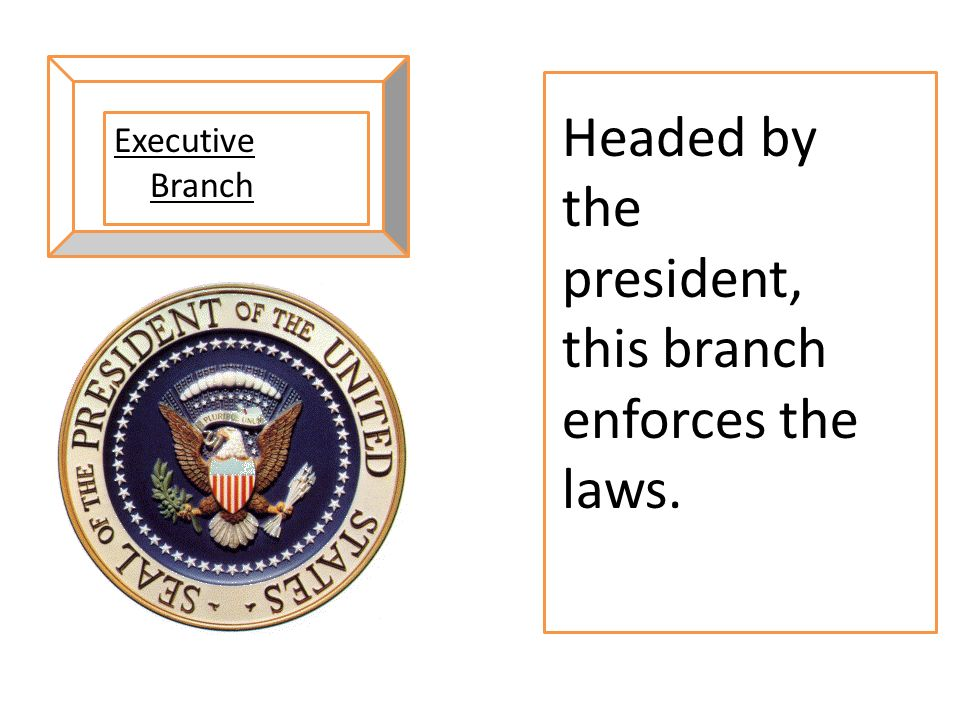 Headed by the president, this branch enforces the laws.