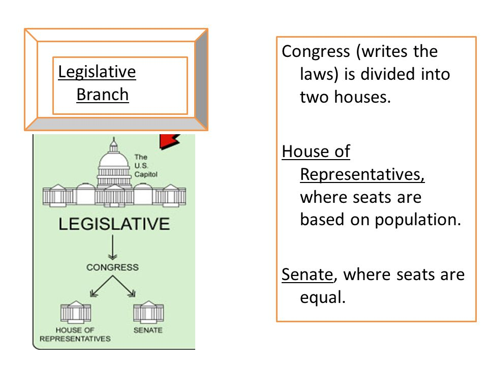 Congress (writes the laws) is divided into two houses
