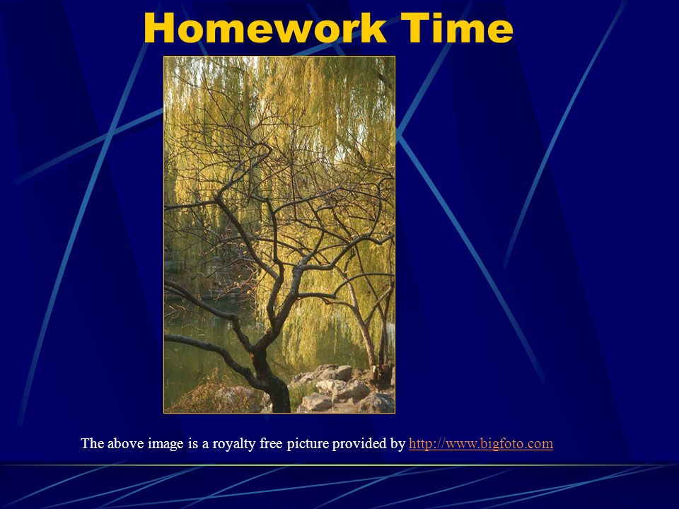 Homework Time The above image is a royalty free picture provided by http://www.bigfoto.com