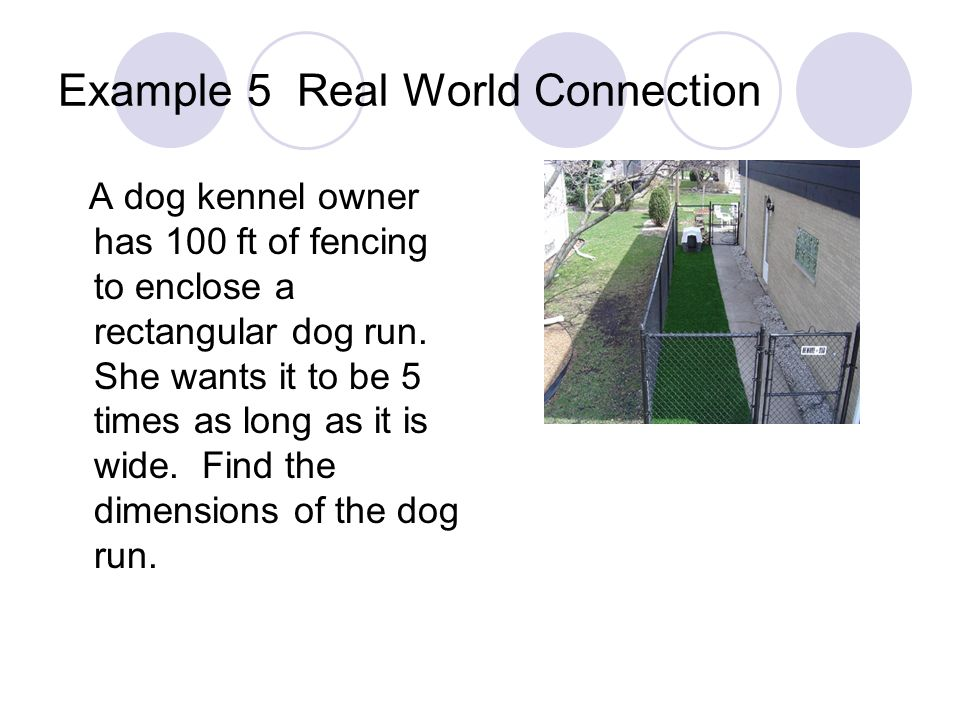 Example 5 Real World Connection