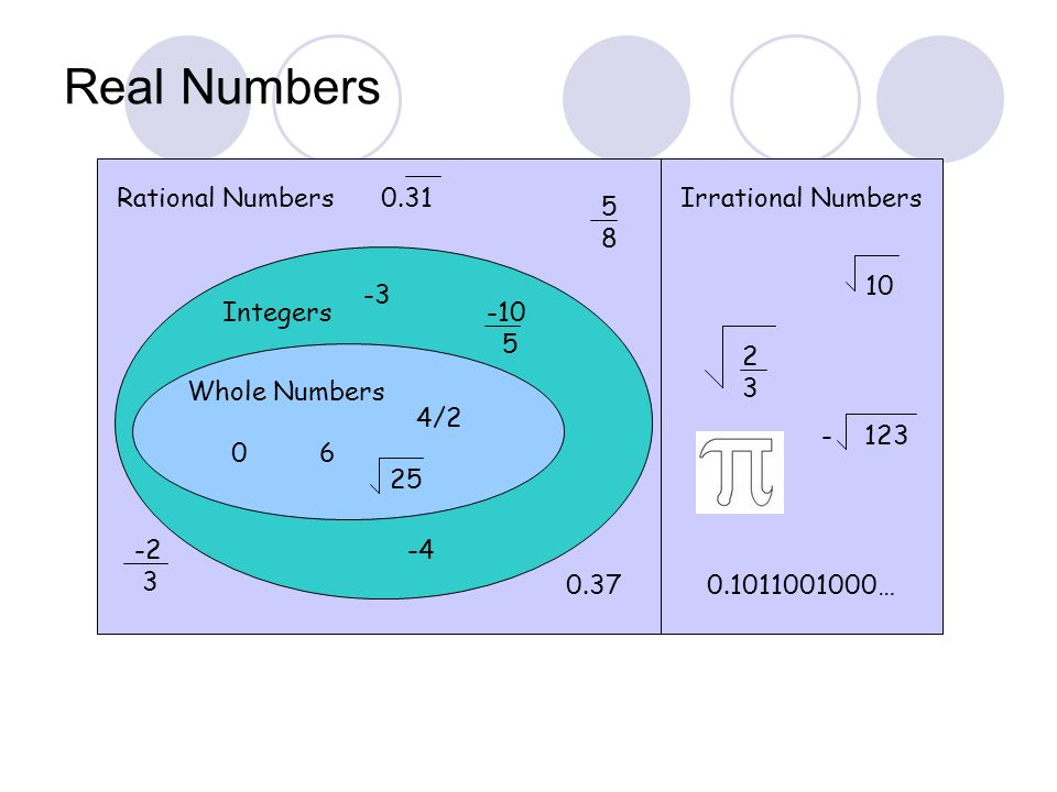 Real Numbers Rational Numbers 0.31 Irrational Numbers 5 8 10 -3