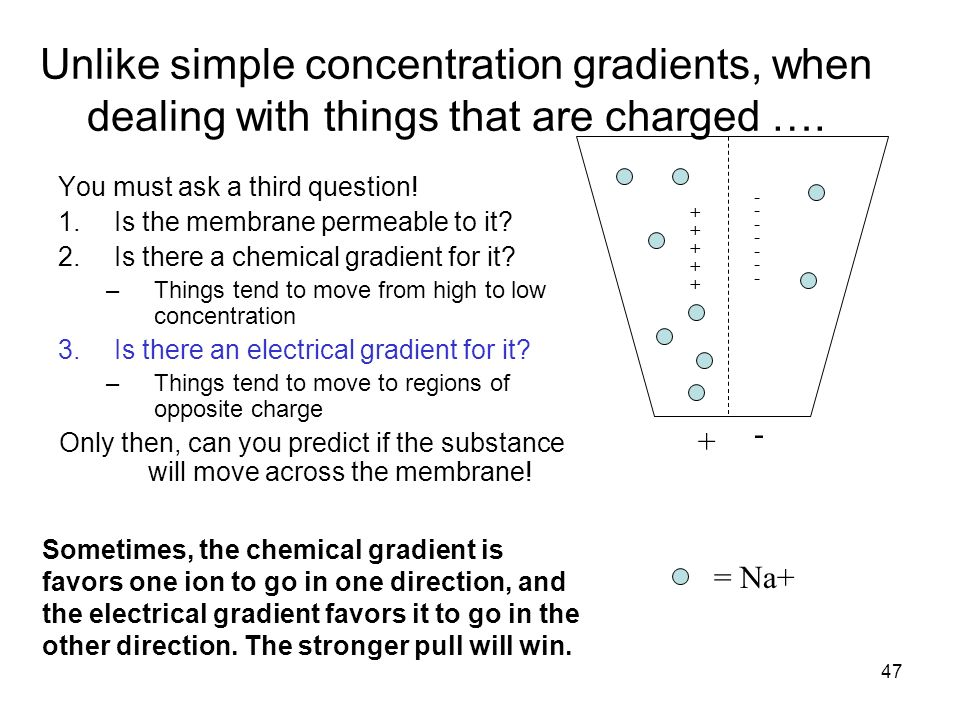 direction and concentration gradients We explain why stable traps are formed when the flow is in the opposite direction  to the concentration gradient, allowing particle separation.