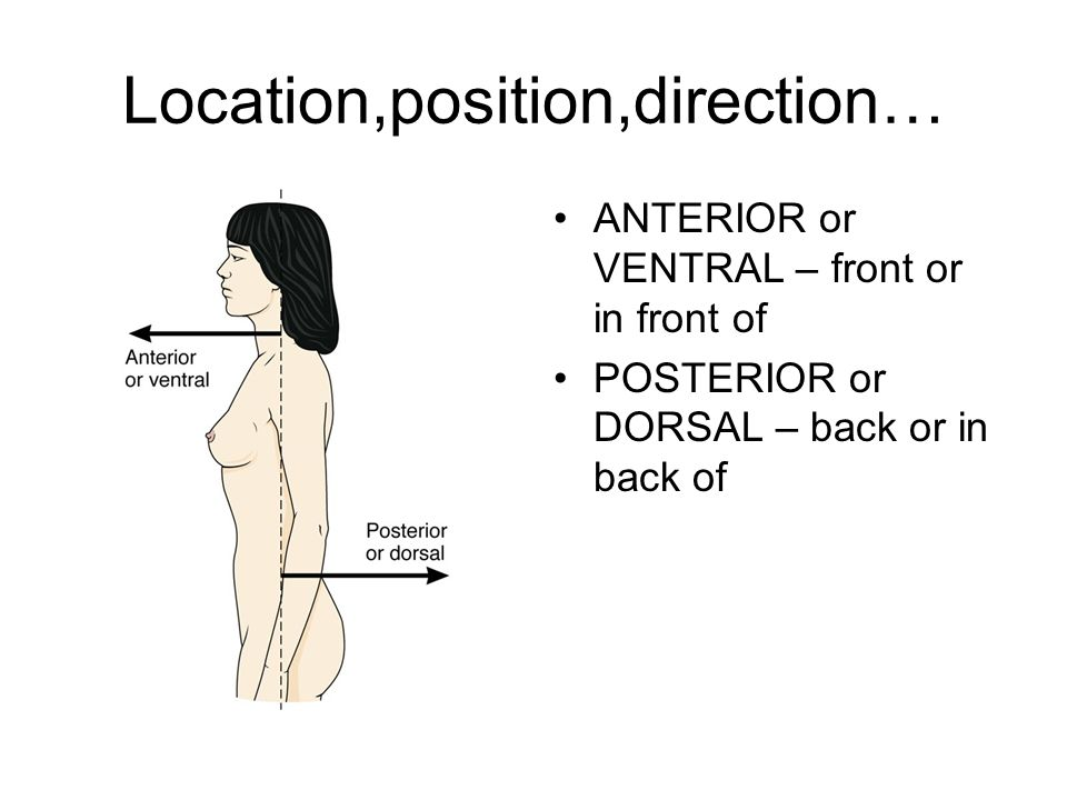 Location,position,direction…