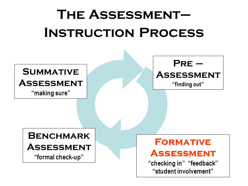 The Assessment–Instruction Process