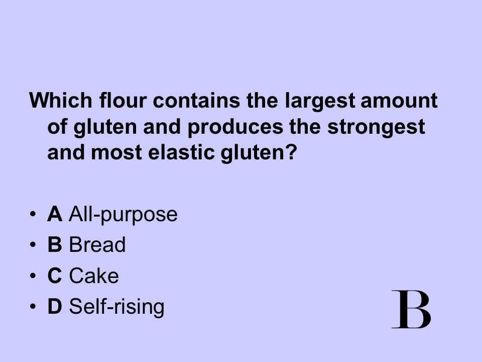 Which flour contains the largest amount of gluten and produces the strongest and most elastic gluten