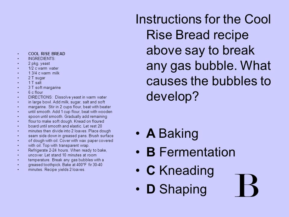 Instructions for the Cool Rise Bread recipe above say to break any gas bubble. What causes the bubbles to develop