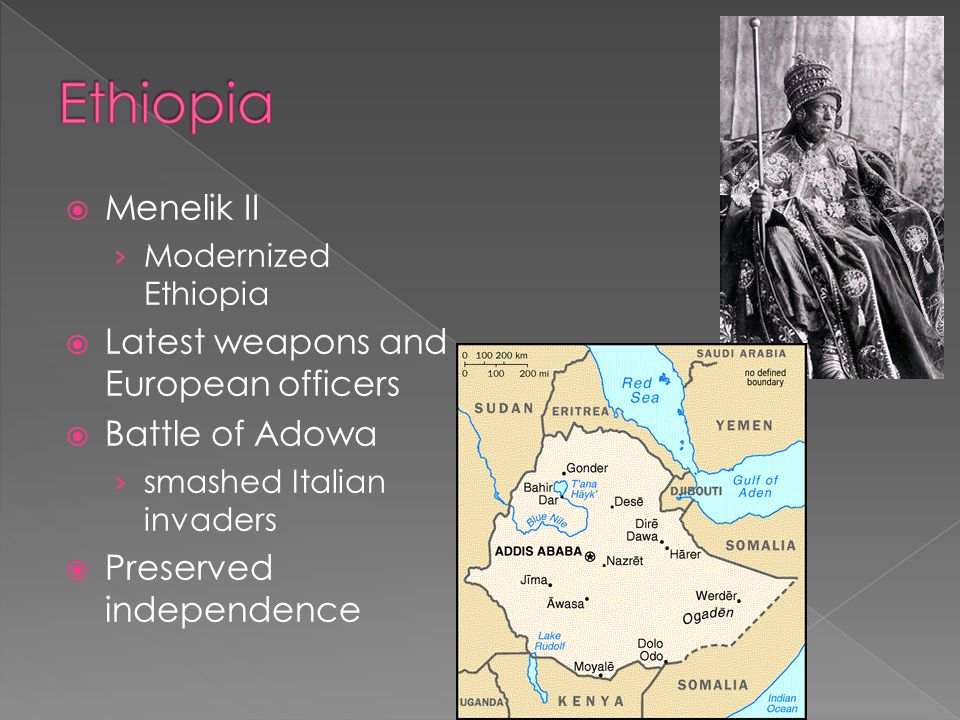 Ethiopia Menelik II Latest weapons and European officers