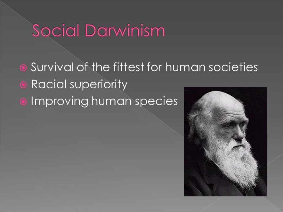 Social Darwinism Survival of the fittest for human societies