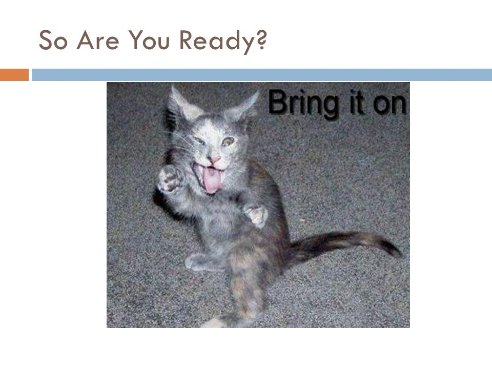 So Are You Ready
