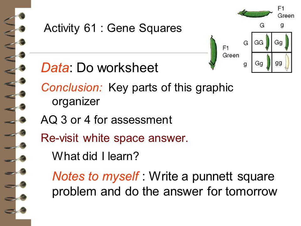 Activity 61 : Gene Squares