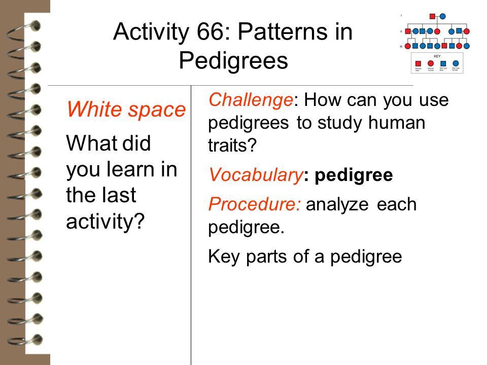 Activity 66: Patterns in Pedigrees