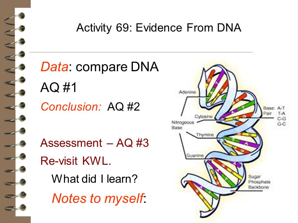 Activity 69: Evidence From DNA