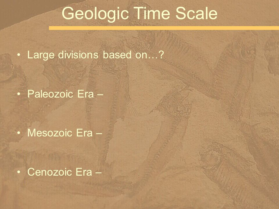 Geologic Time Scale Large divisions based on… Paleozoic Era –