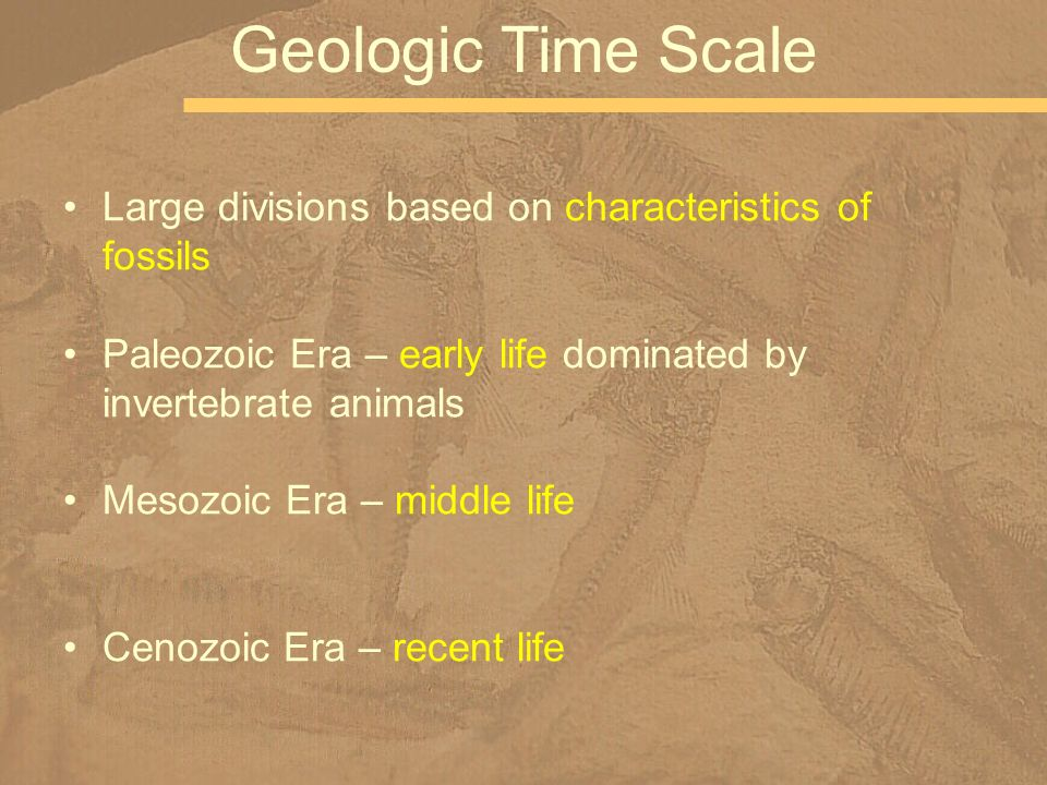 Geologic Time Scale Large divisions based on characteristics of fossils. Paleozoic Era – early life dominated by invertebrate animals.
