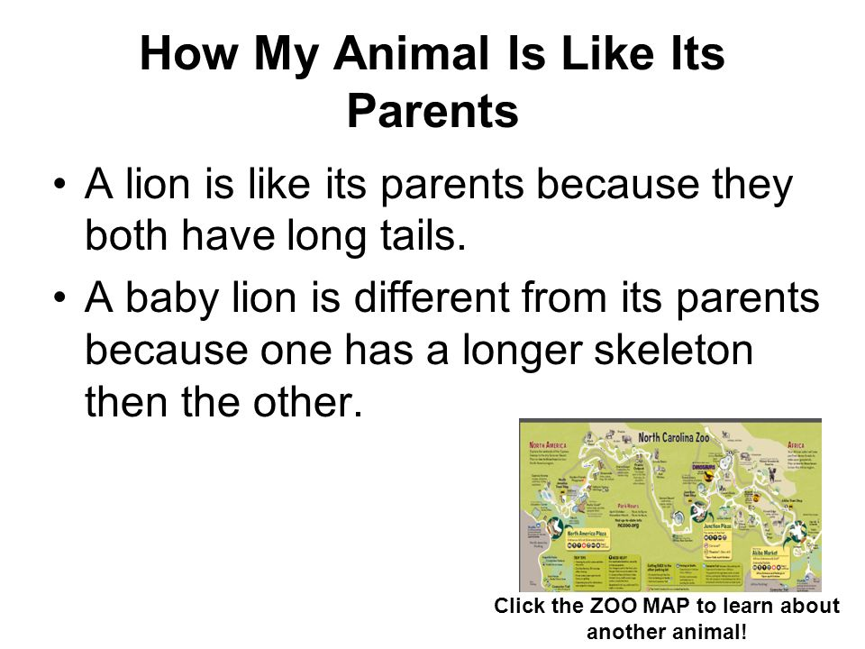 How My Animal Is Like Its Parents