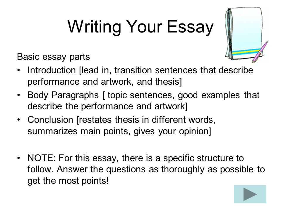 basics of writing an essay What is an essay and who writes it?