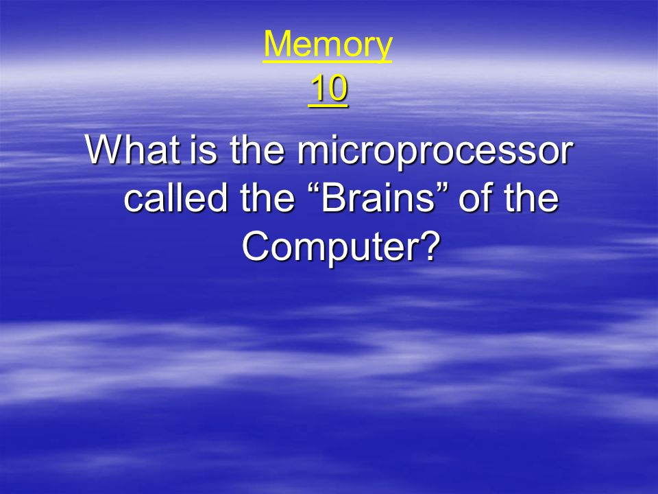 What is the microprocessor called the Brains of the Computer